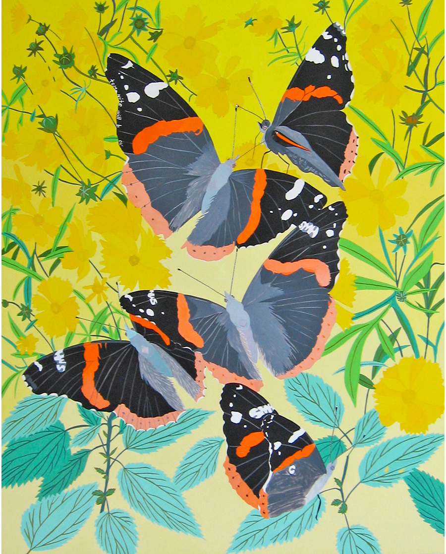 Red Admiral (smh)
