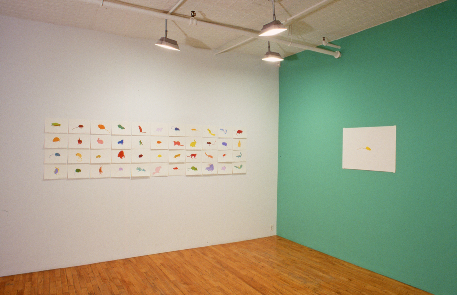 Installation, Debs and Co., New York
