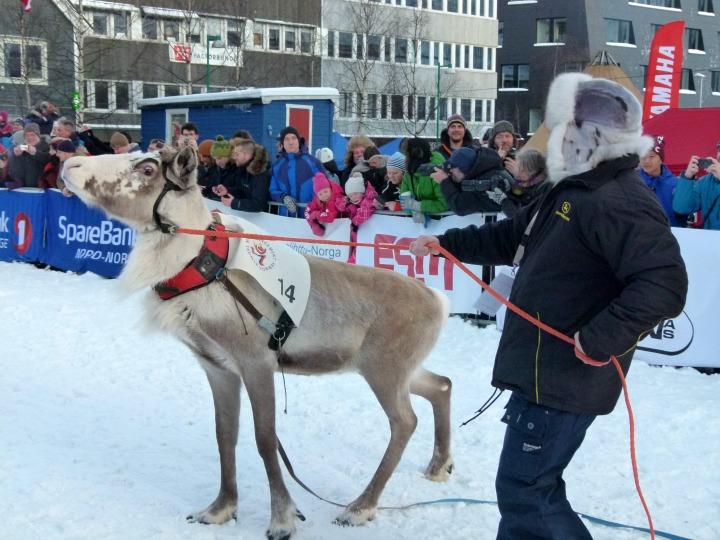 Sami National Day 40