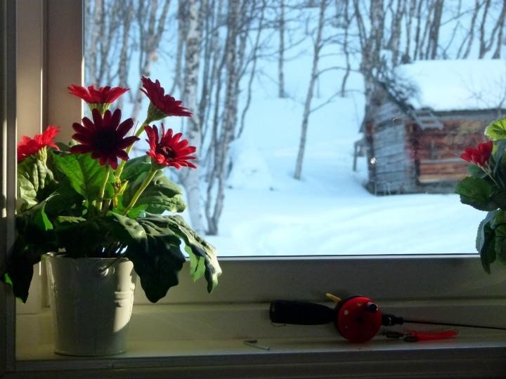 Swedish-Cabin-24.jpg