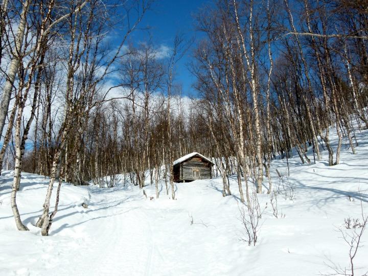 Swedish Lapland 11