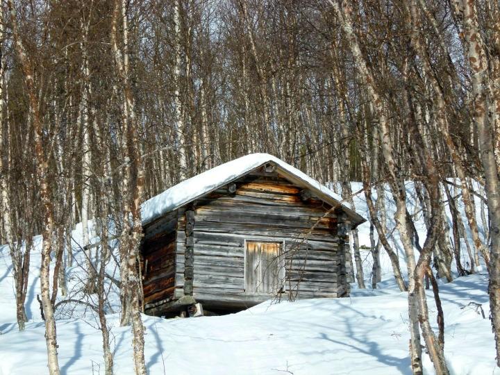 Swedish Lapland 4