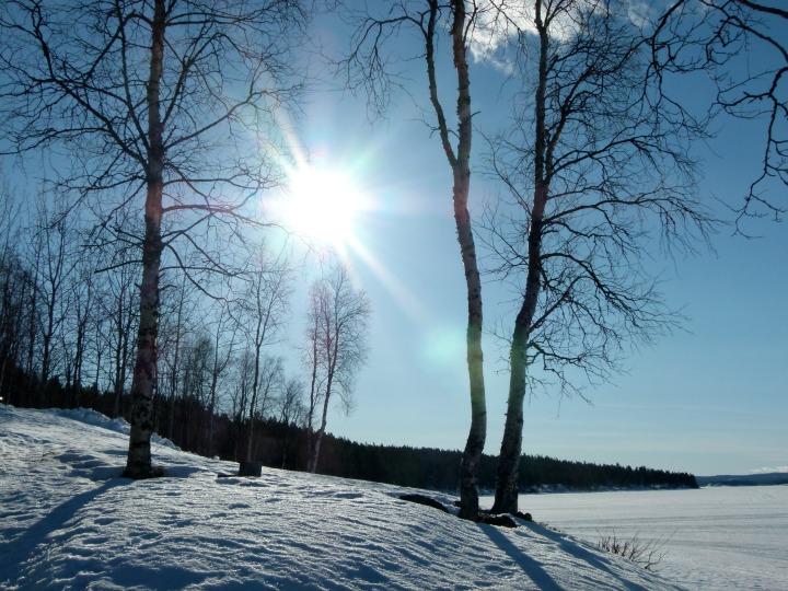 Swedish Lapland 7