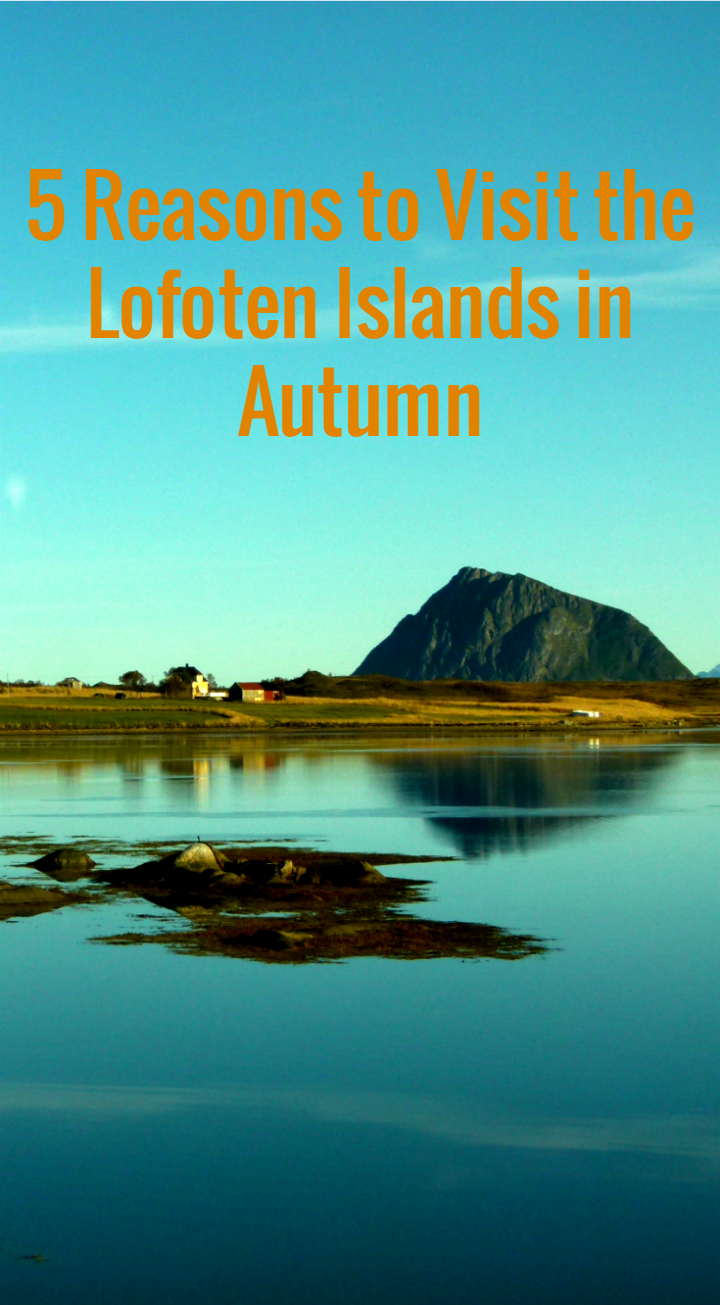 5 Reasons to Visit the Lofoten Islands in Autumn.png