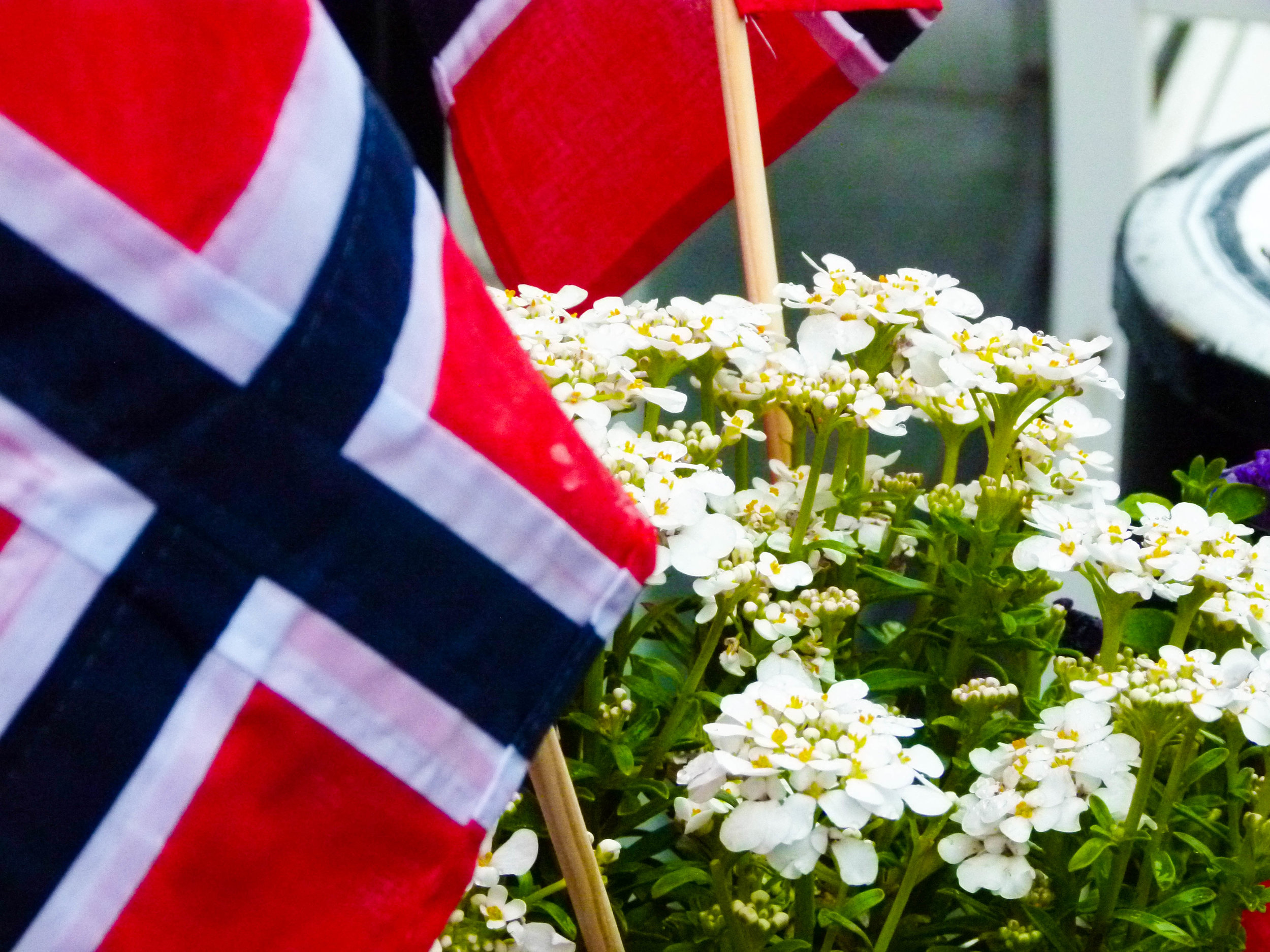 Happy Birthday Norway!!!