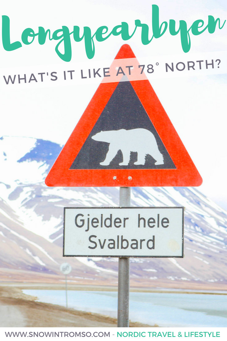 Visiting Svalbard was intense. At one point I found myself staring at the towering mountains across the fjord and feeling incredibly small.