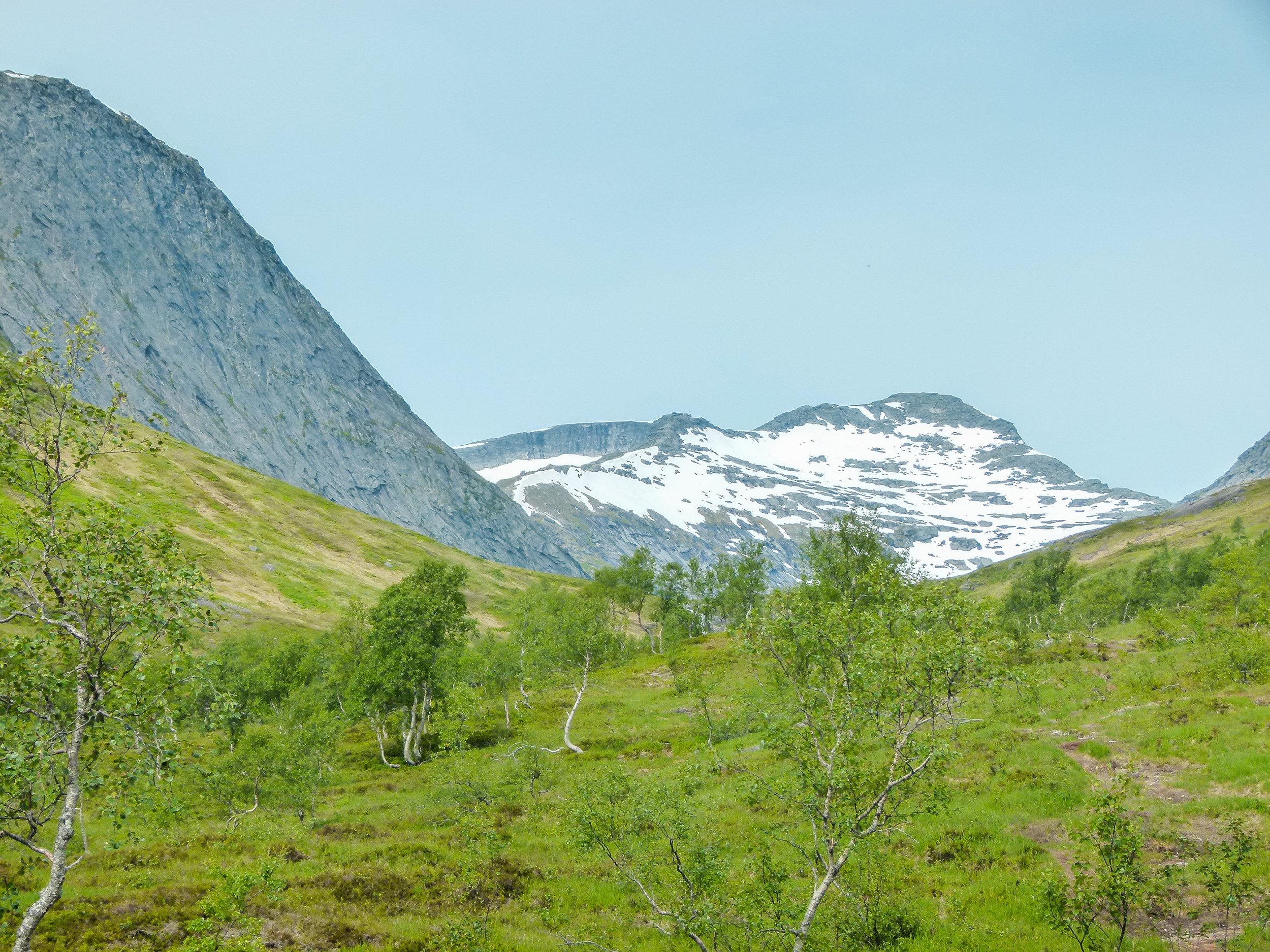 hiking sjunkhatten national park bodo northern norway