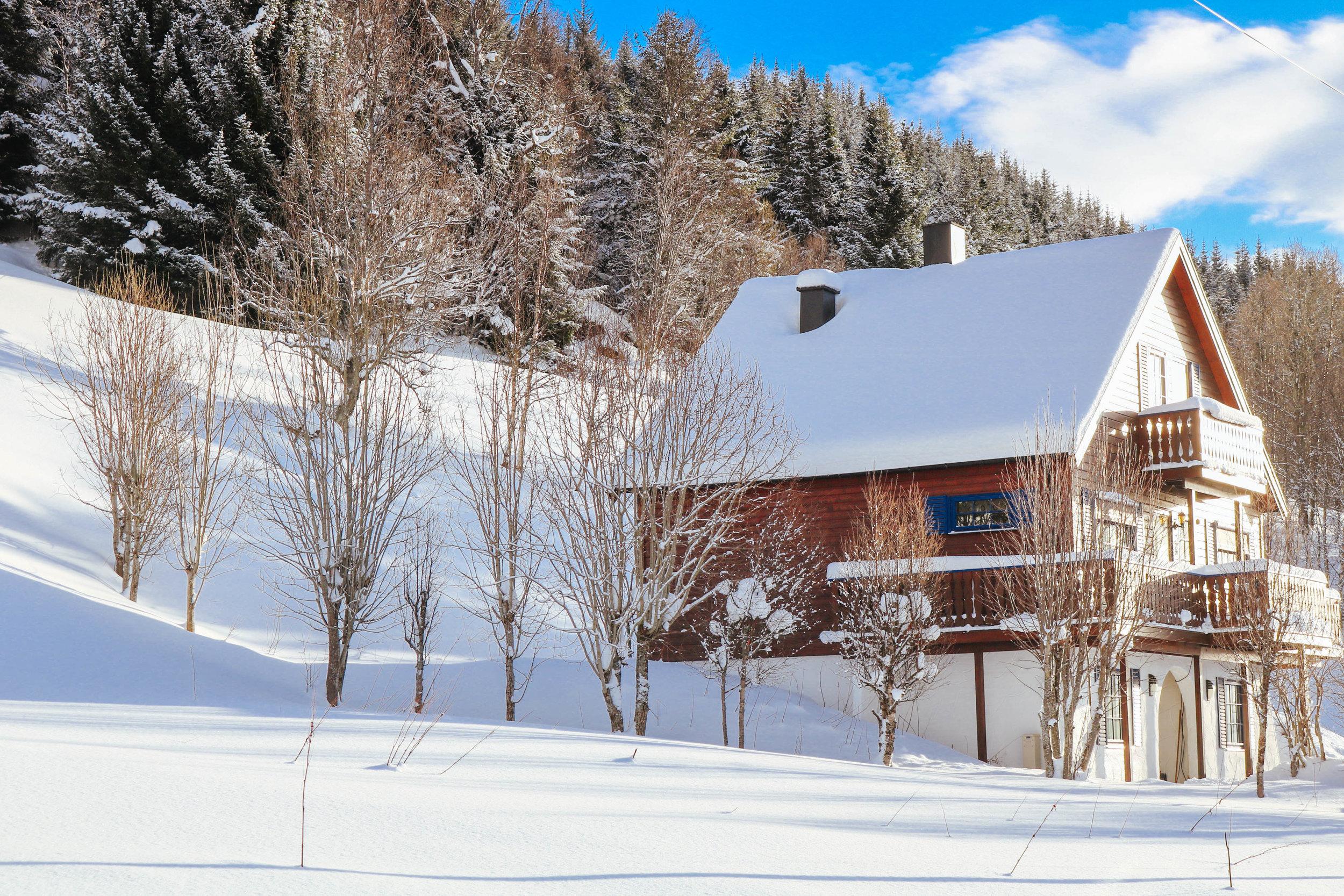 visit tromso in winter