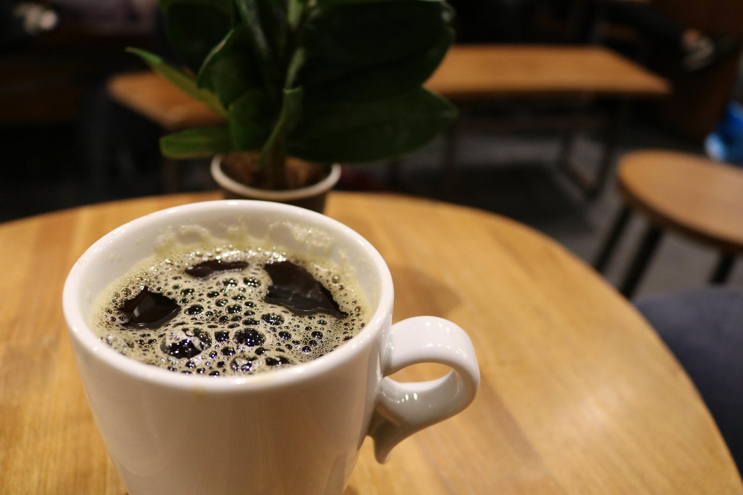 kaffe drommedar bergen
