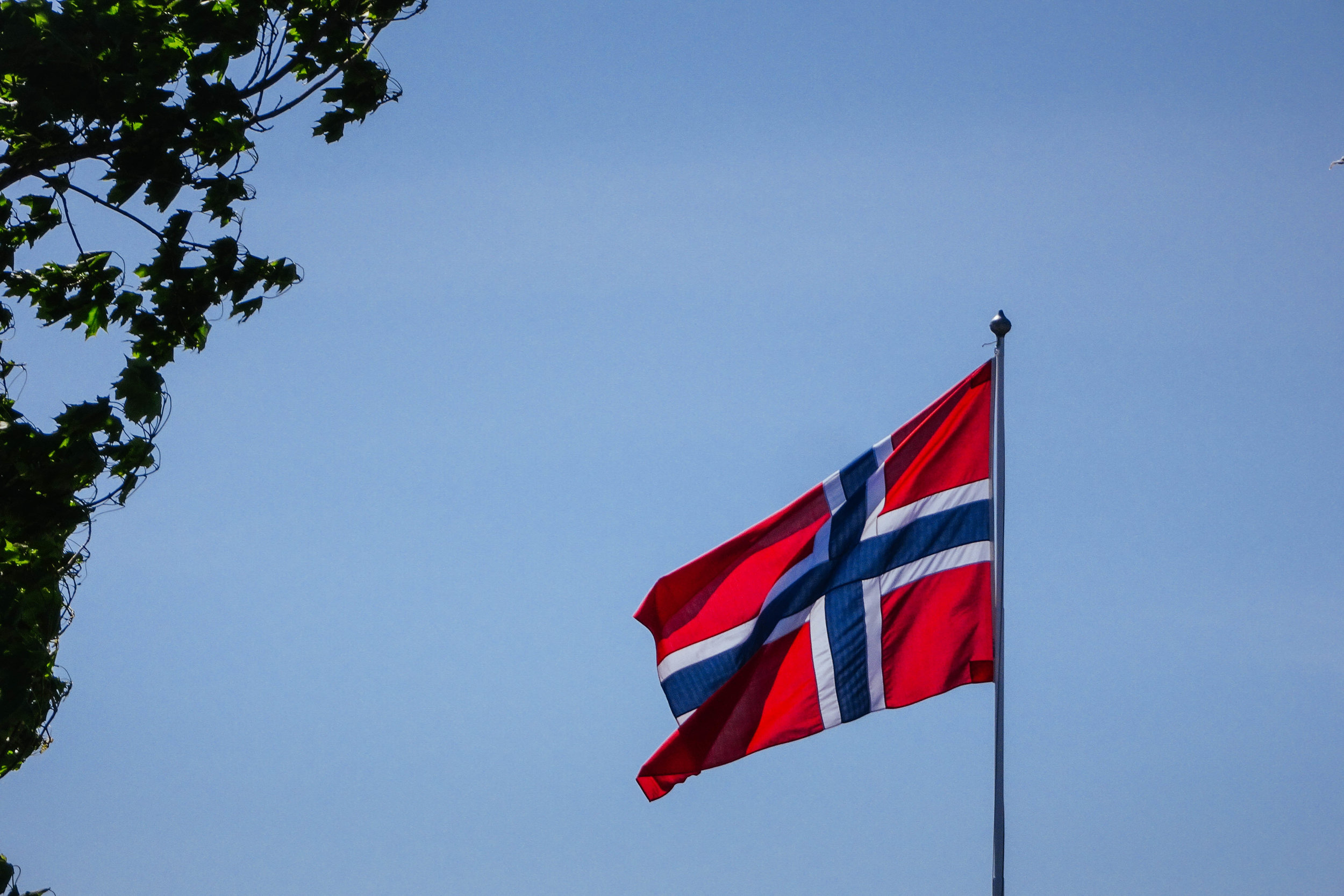 But enough of the food now! If you're visiting Norway on May 17th, you'll literally see the Norwegian flag everywhere you go!