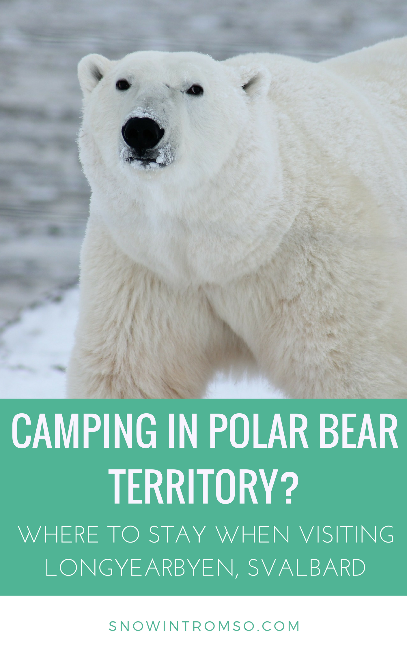 Considering a visit to Svalbard but unsure where to stay? Click through to read more about accommodation options on Svalbard!