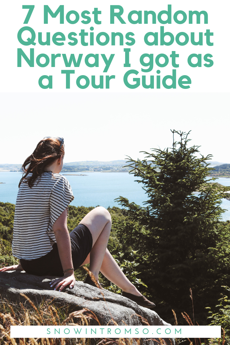 Working as a tour guide in Norway, it seems like I learnt more about the country than in 4 years of living here. These are the 7 most random questions I've been asked over the course of the summer - and the answers!