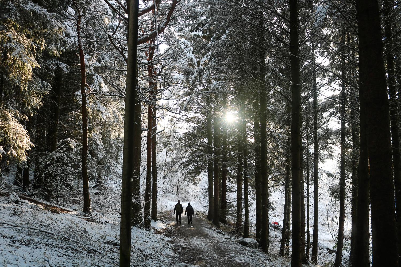 Stavanger in winter
