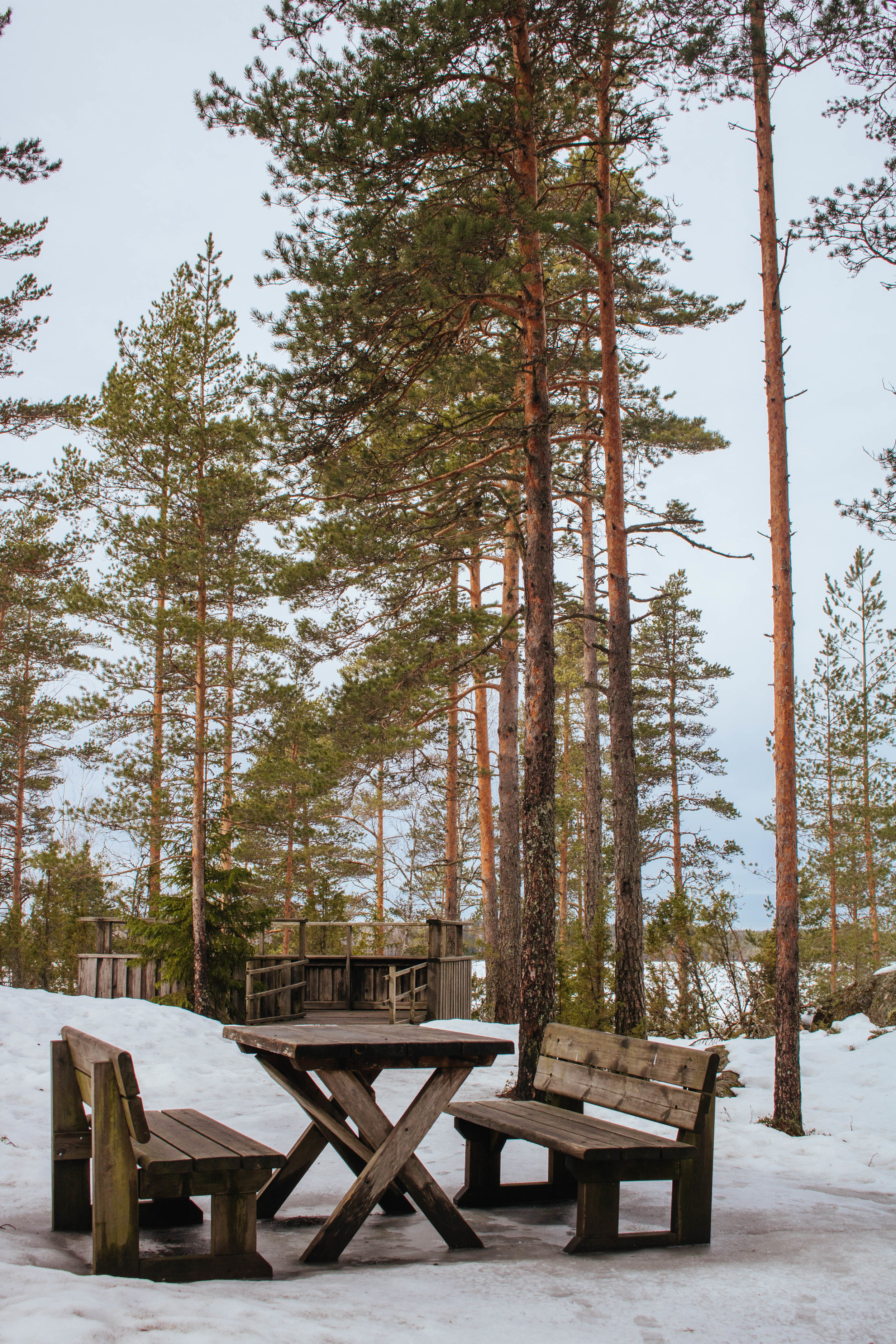 rest facilities kurjenrahka national park finland.jpg
