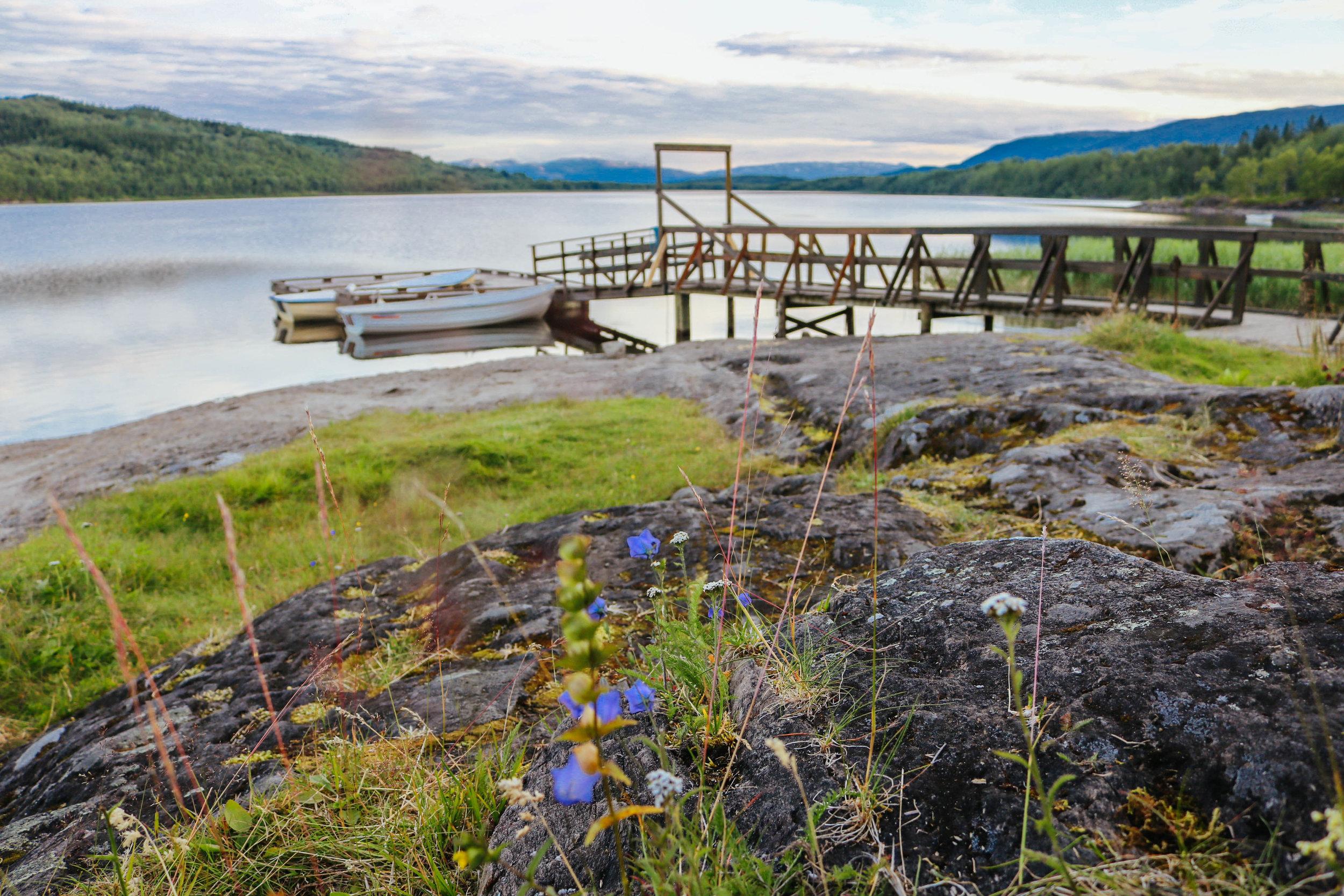 fauske lake northern norway