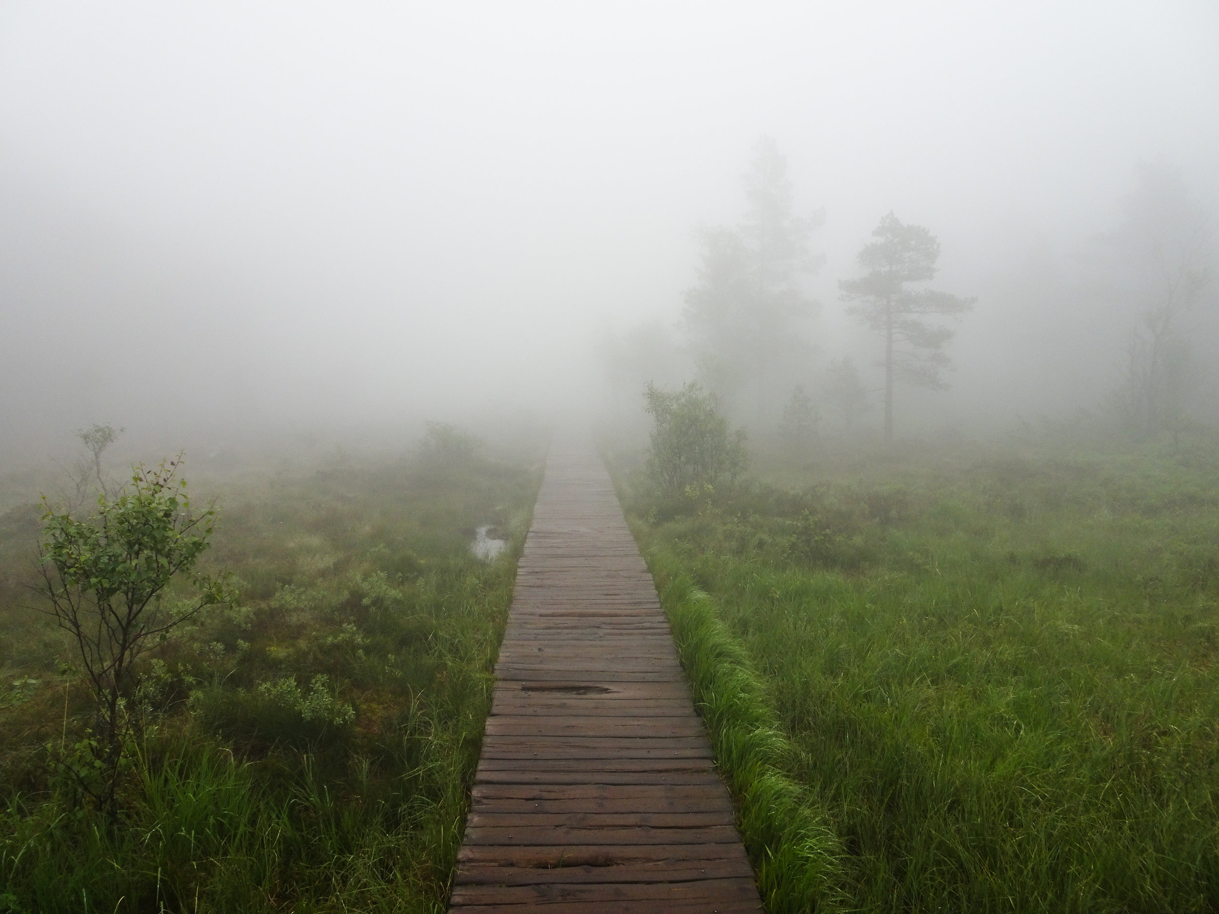 Keep in mind: The entire trail can be super slippery in weather like this!