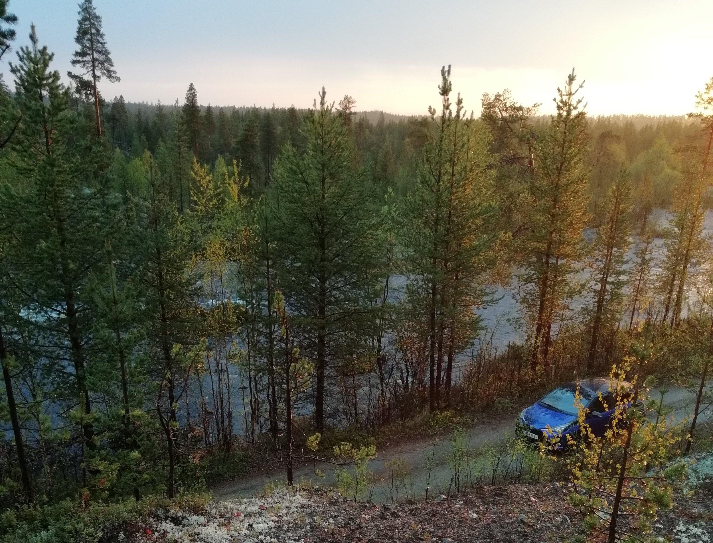 Pasvik Nature Reserve - Beautiful view of forest and stream from hilltop in midnight sun