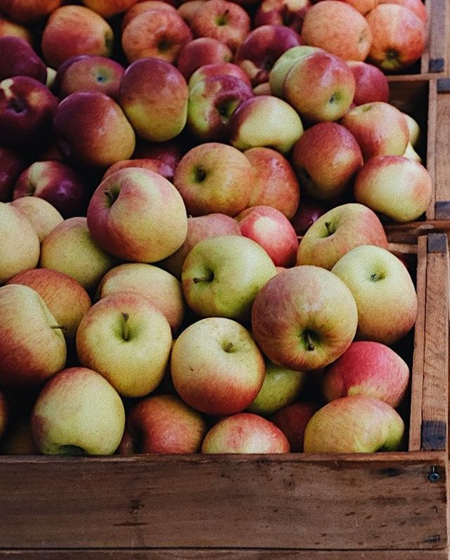 We picked up a few of these beautiful apples from the farmer's market and still haven't decided what we should make with them this weekend. The possibilities are endless—from apple crisps, to tarts, to classic pies. What are your favorite apple recipes?