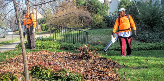 Crew members from A.I.R. in Washington D.C. using modern, no-emissions, much quieter battery-powered lawn equipment. (QCDC photo.)
