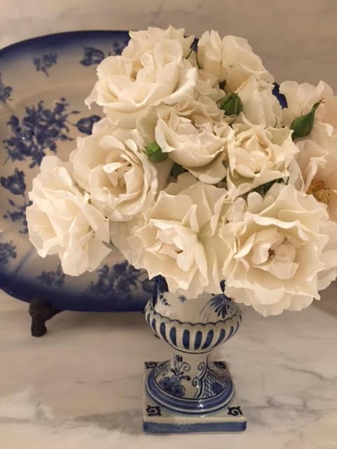 white in vase.jpg