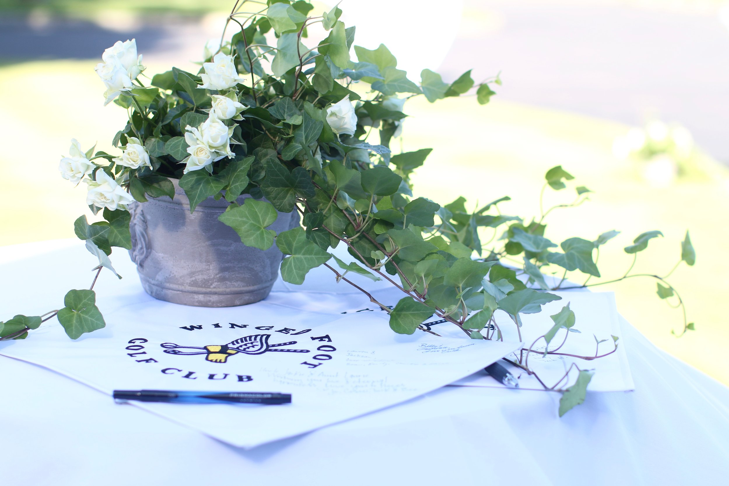 Wedding accents, potted ivy