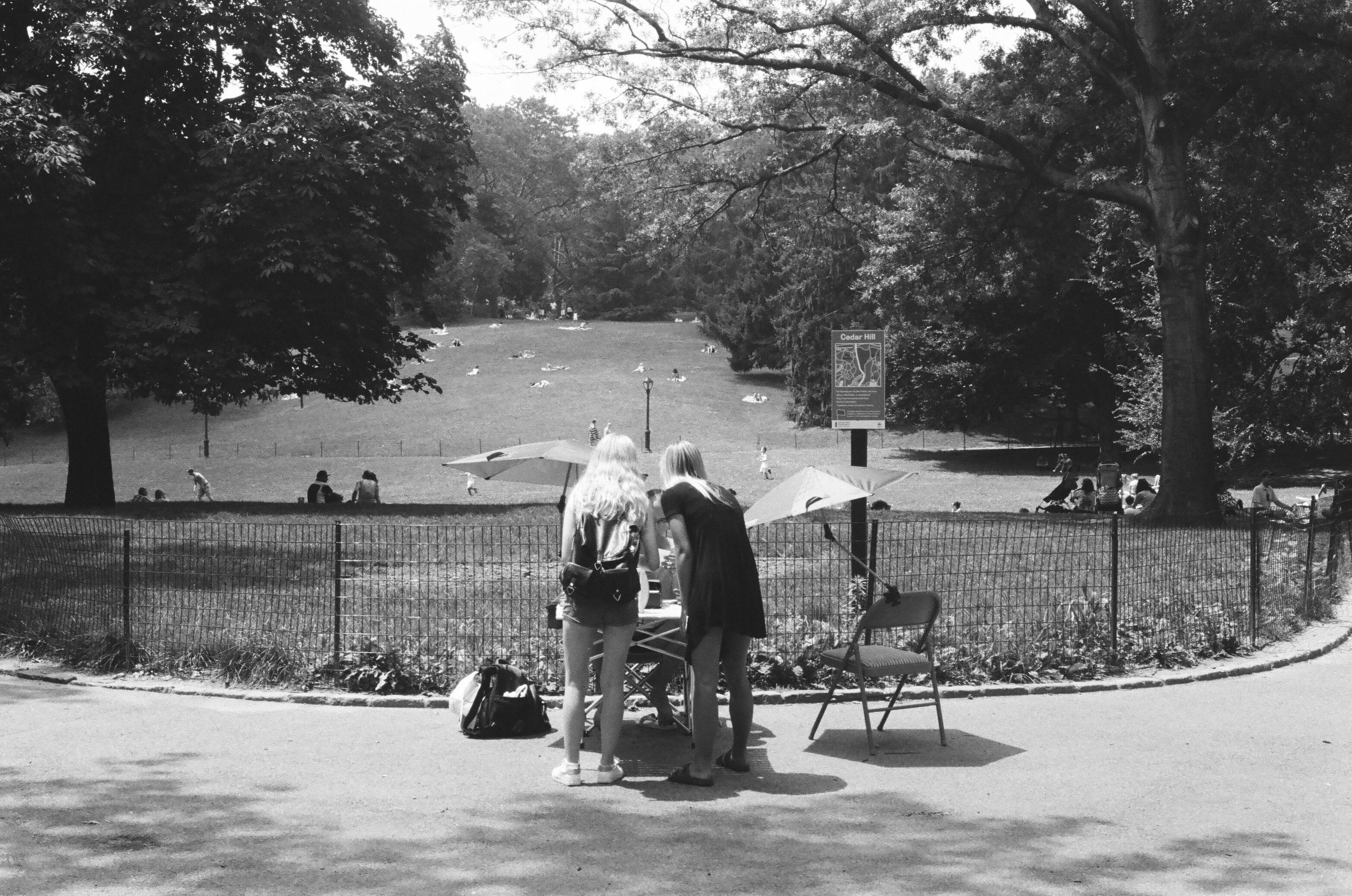 central park. 2016 35mm