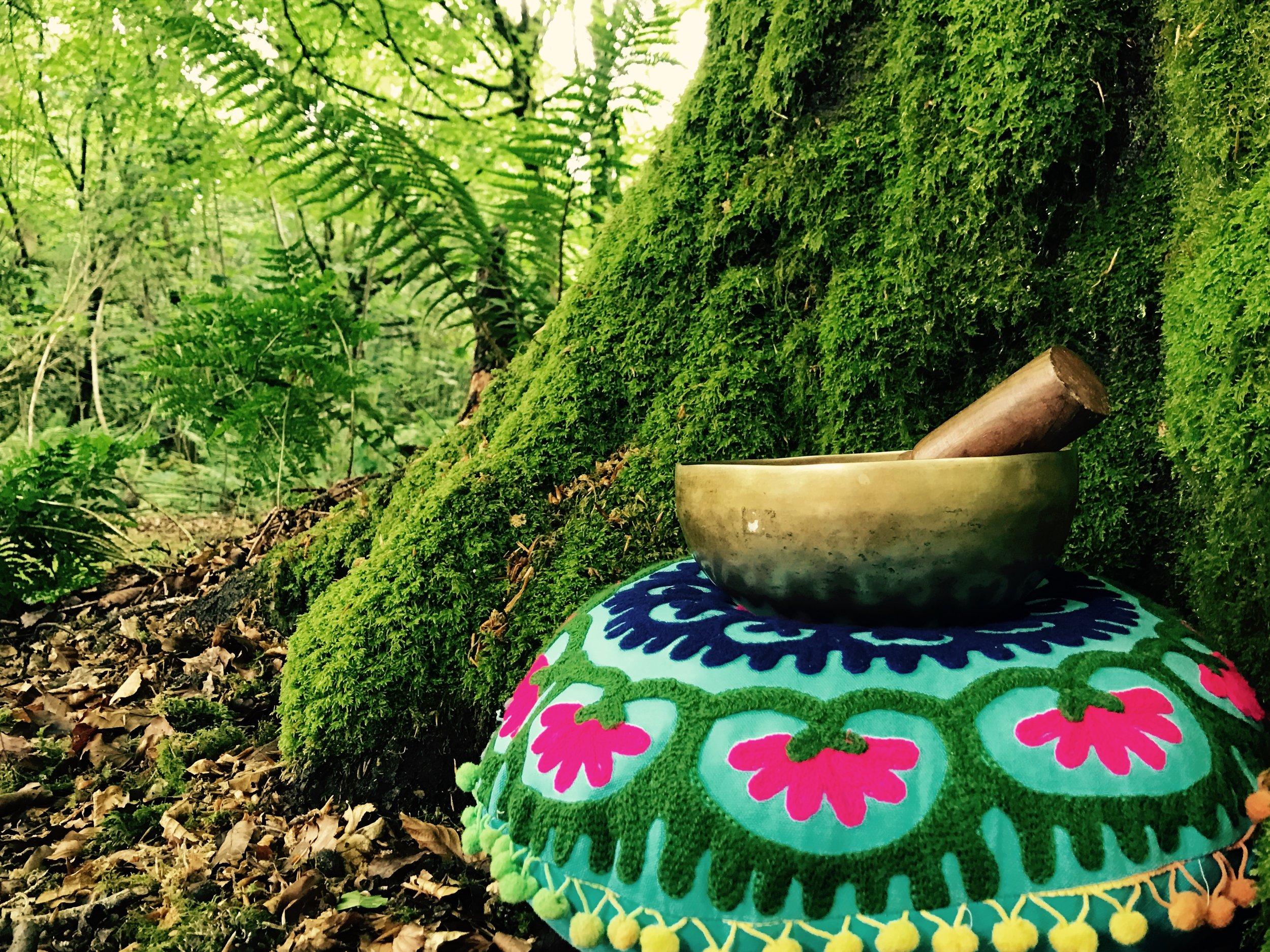 Bowl at tree.jpg
