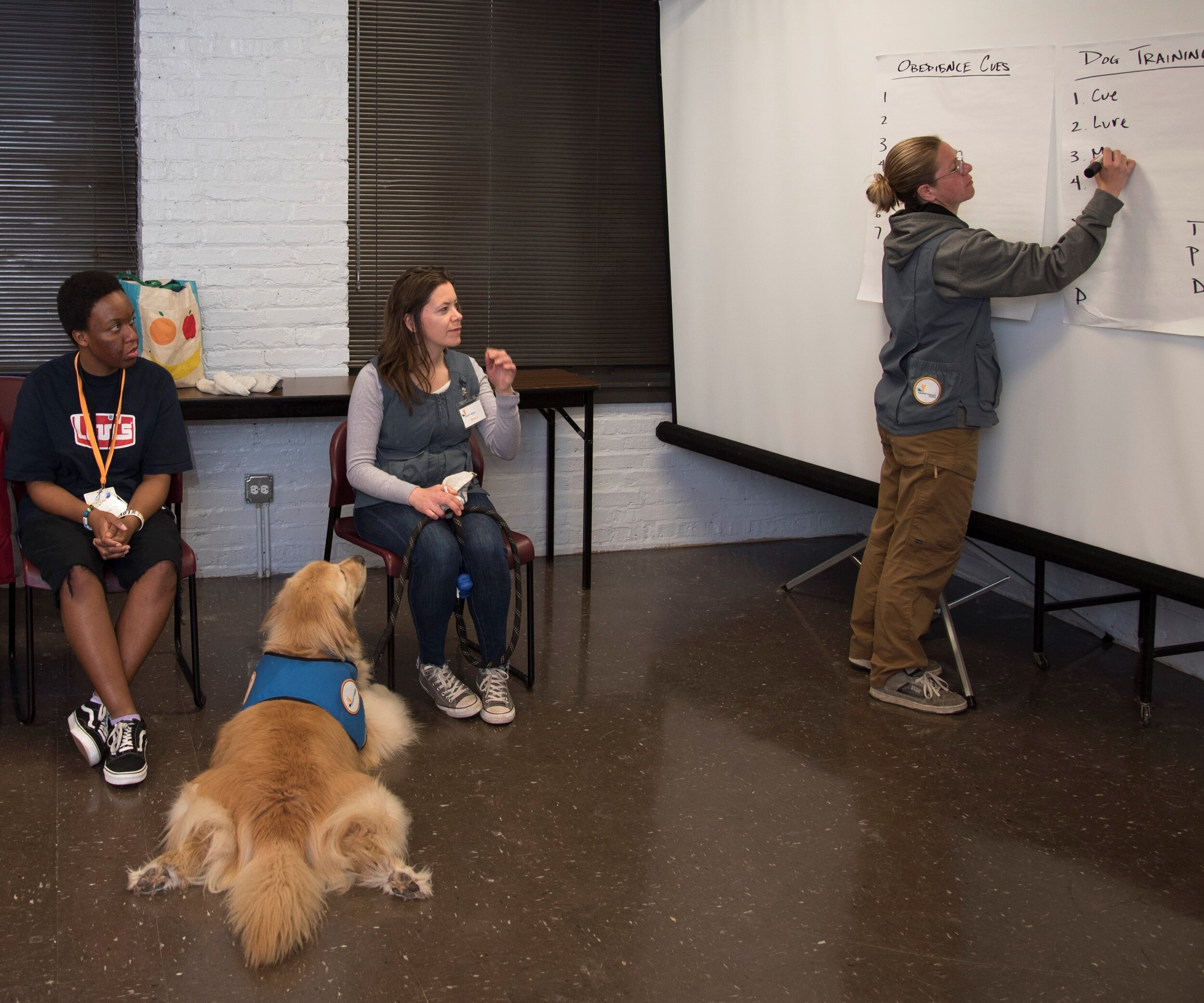 Therapy dog Waffles awaits instructions as volunteers and participants learn essential dog training skills from Program Leader Emily Stoddard