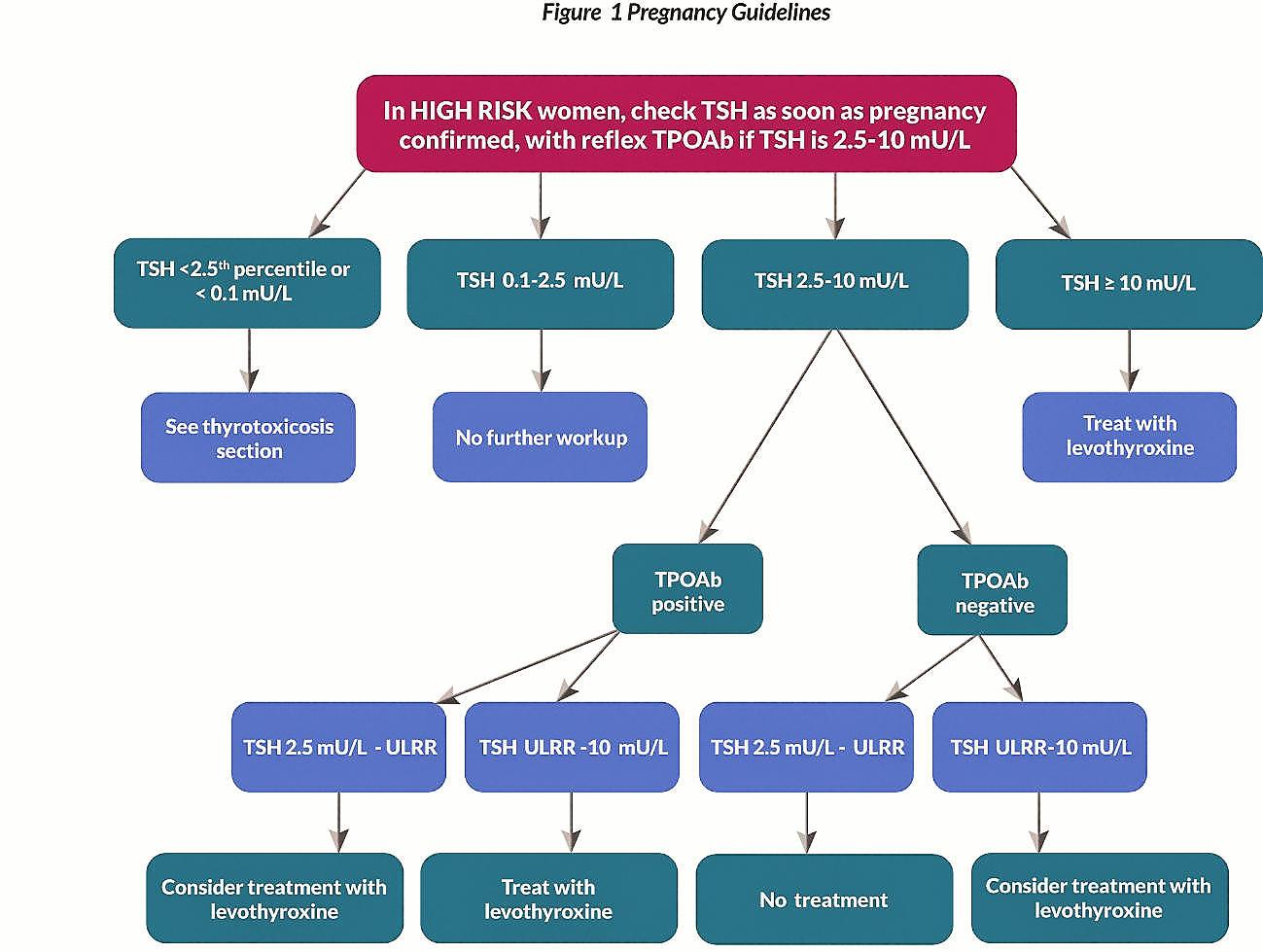 2017 Ata Guidelines Thyroid Pregnancy Part 1 Gt Health