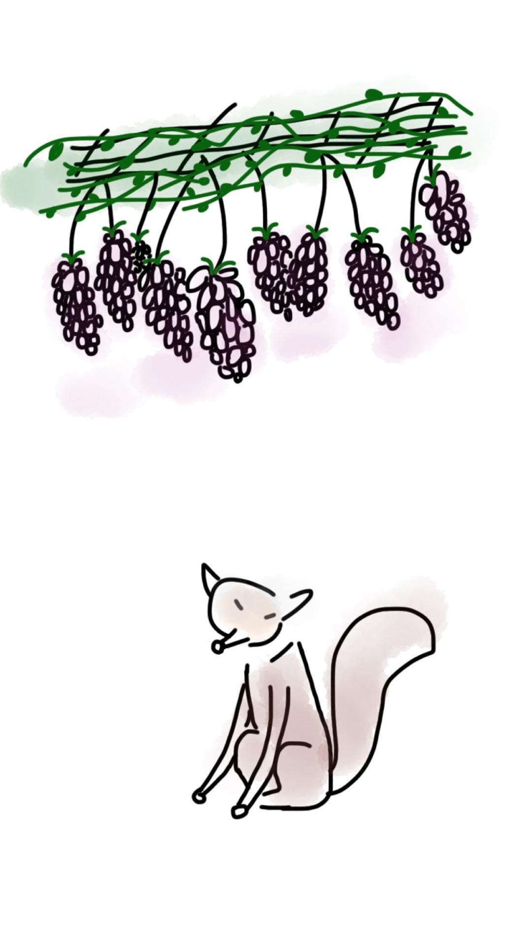 Fox-grape.jpg