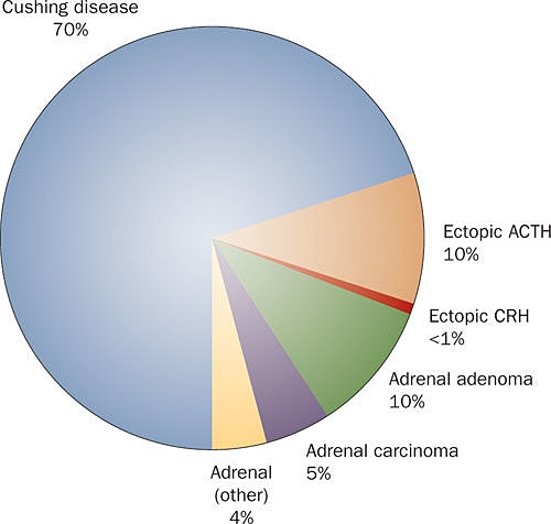Cushing Syndrome Prevalence.jpg