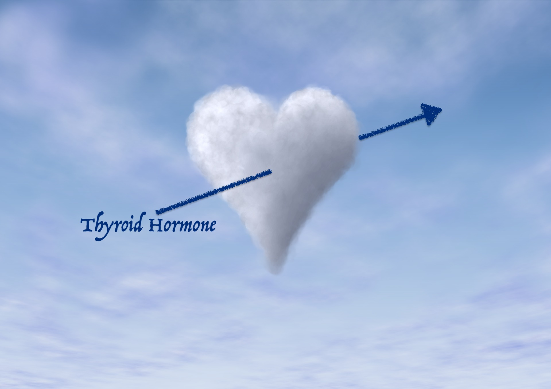 Thyroid Heart