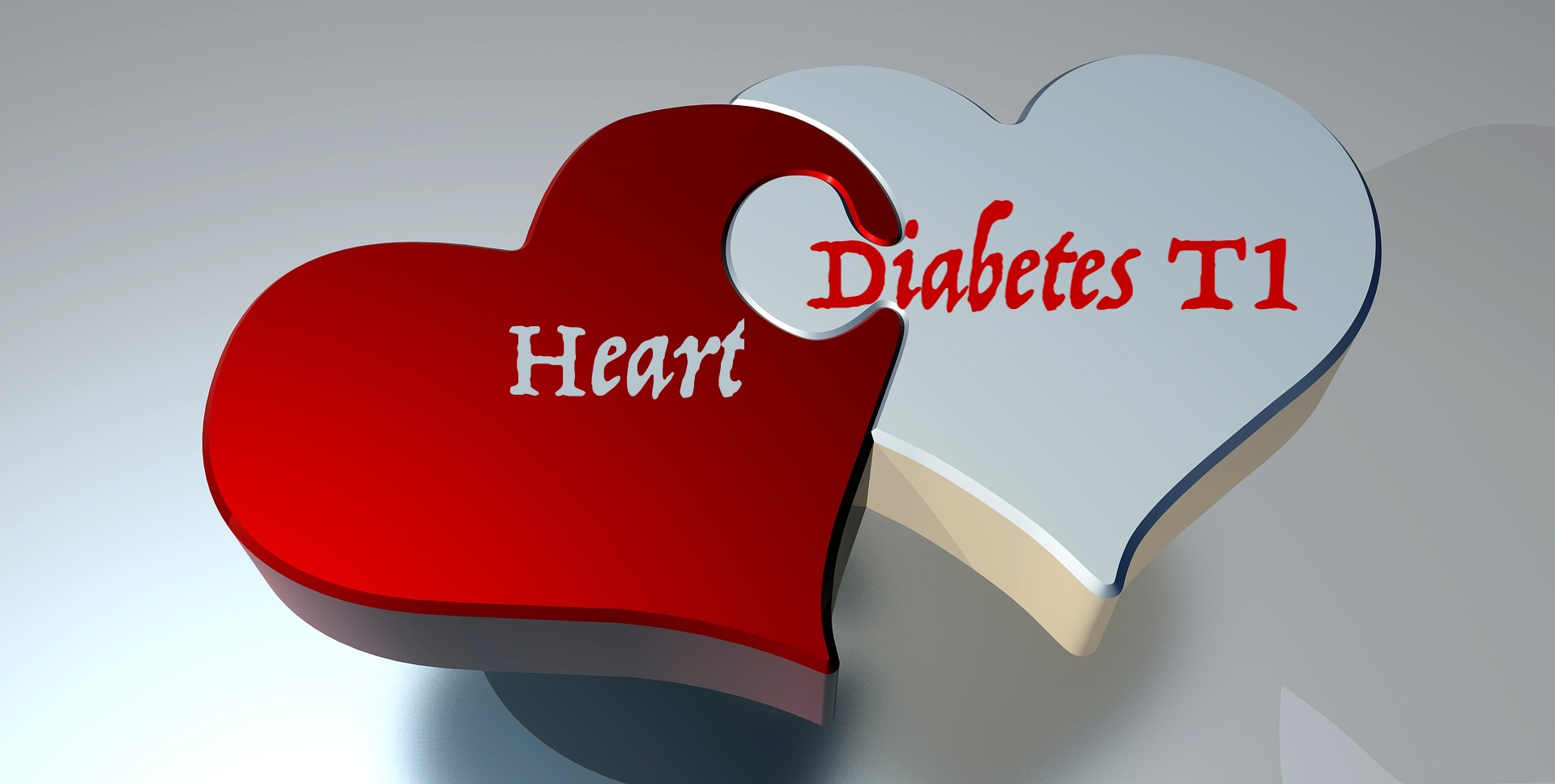 Heart DM1.jpg