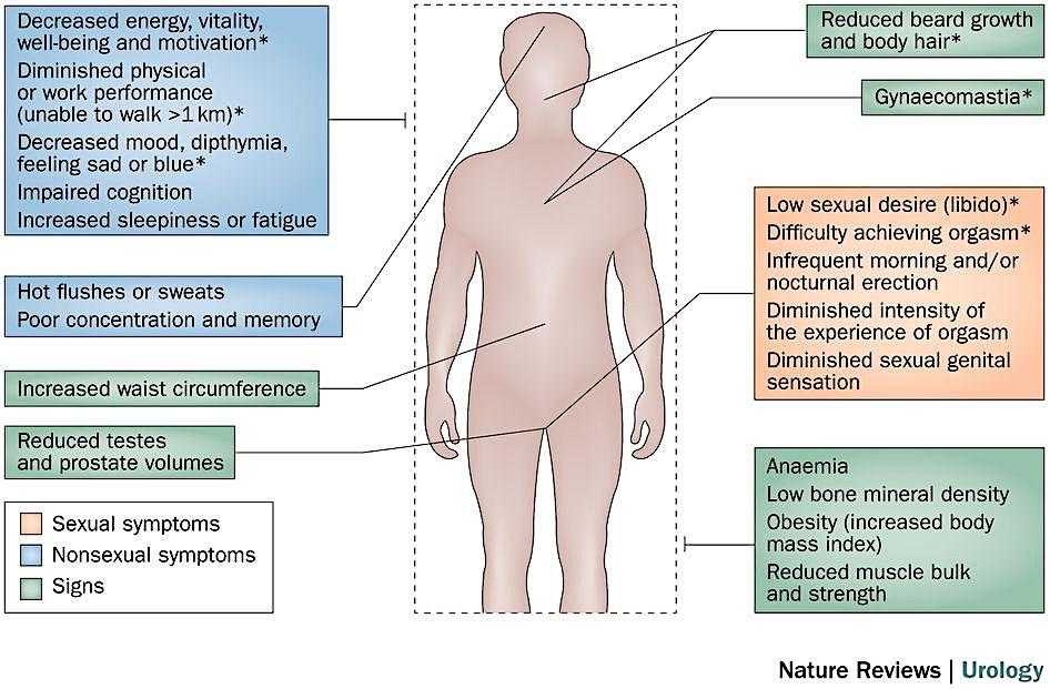 Testo Deficiency