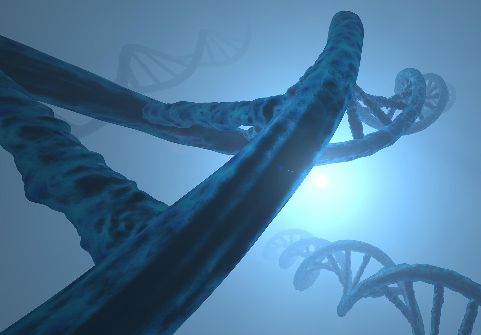 DNA random mix