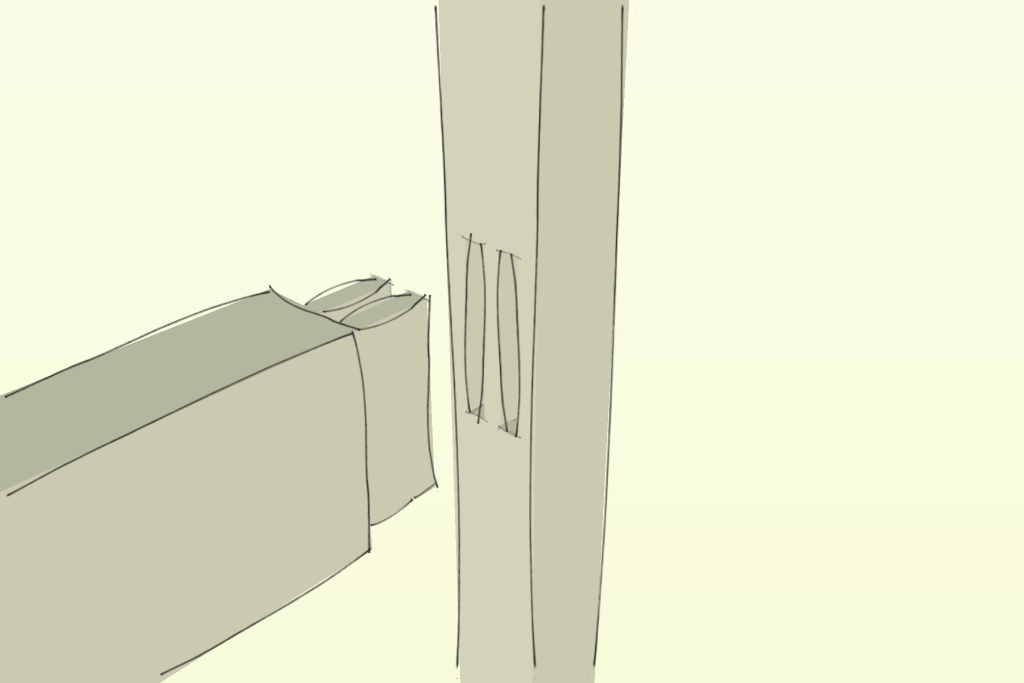 The twin mortise and tenon joint