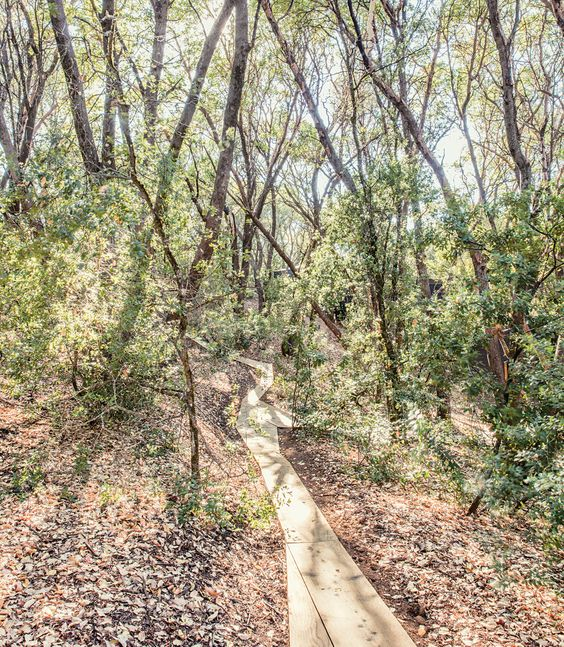BURNHAM's wood walkways