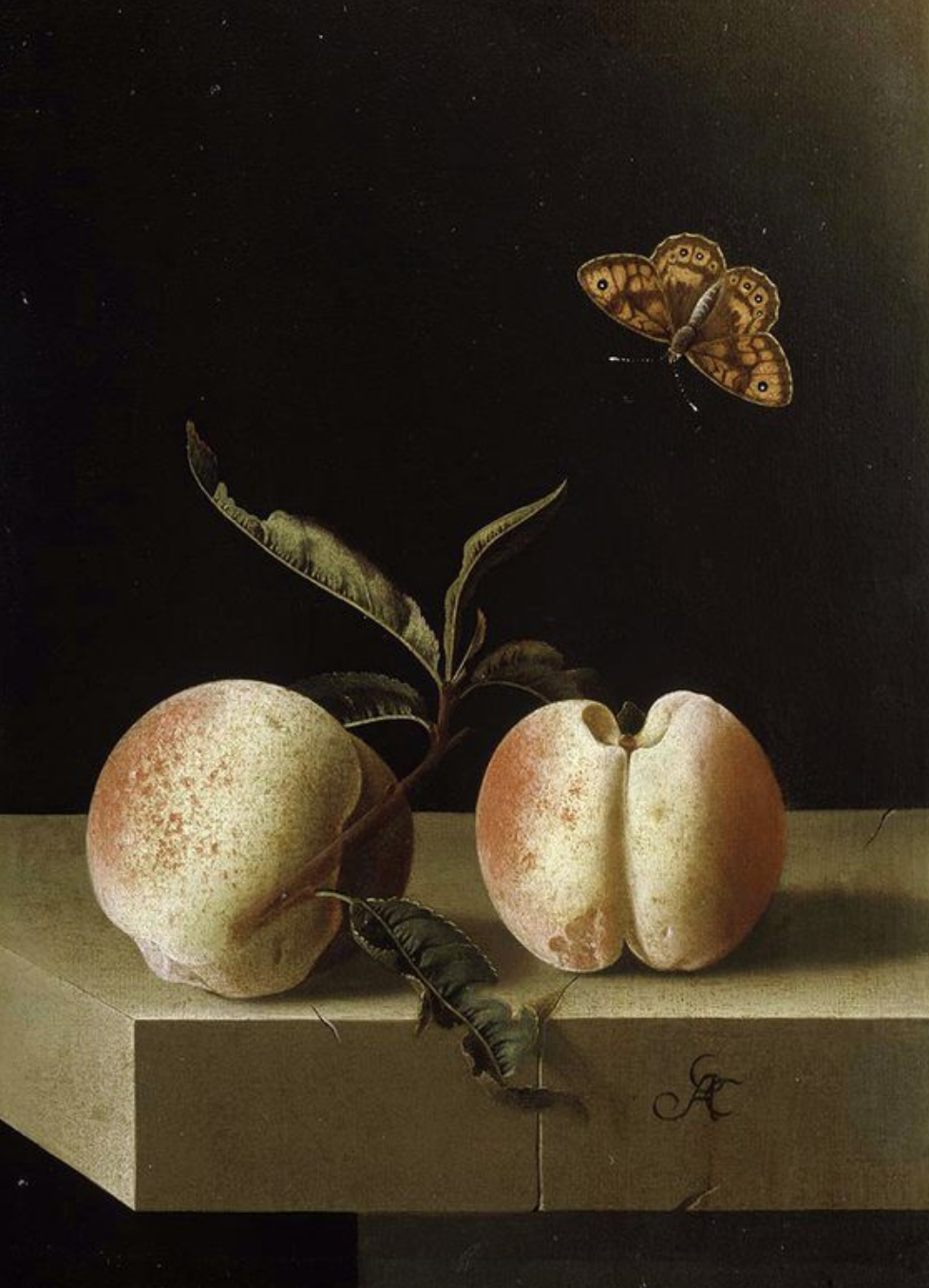 Adriaen Coorte, Still life with two peaches and a fritillary butterfly on a stone ledge, 1660s