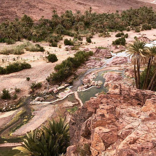 Dans quelques jours, je retourne à Ouarzazate. Tellement hâte de retrouver ces lieux qui m'apaisent. Je reviendrai cette fois sans nouveau modèle. Objectifs : profiter, marcher, partager, faire le point... C'est important après les 4 ans d'existence de Kariaa de prendre du temps pour réfléchir au projet. Belle semaine à tous  #kariaa #projetsolidaire #modeethique #maroc #morocco #oasis #travel #marqueengagée #randonnée #handmade #artisanat #whomademyclothes