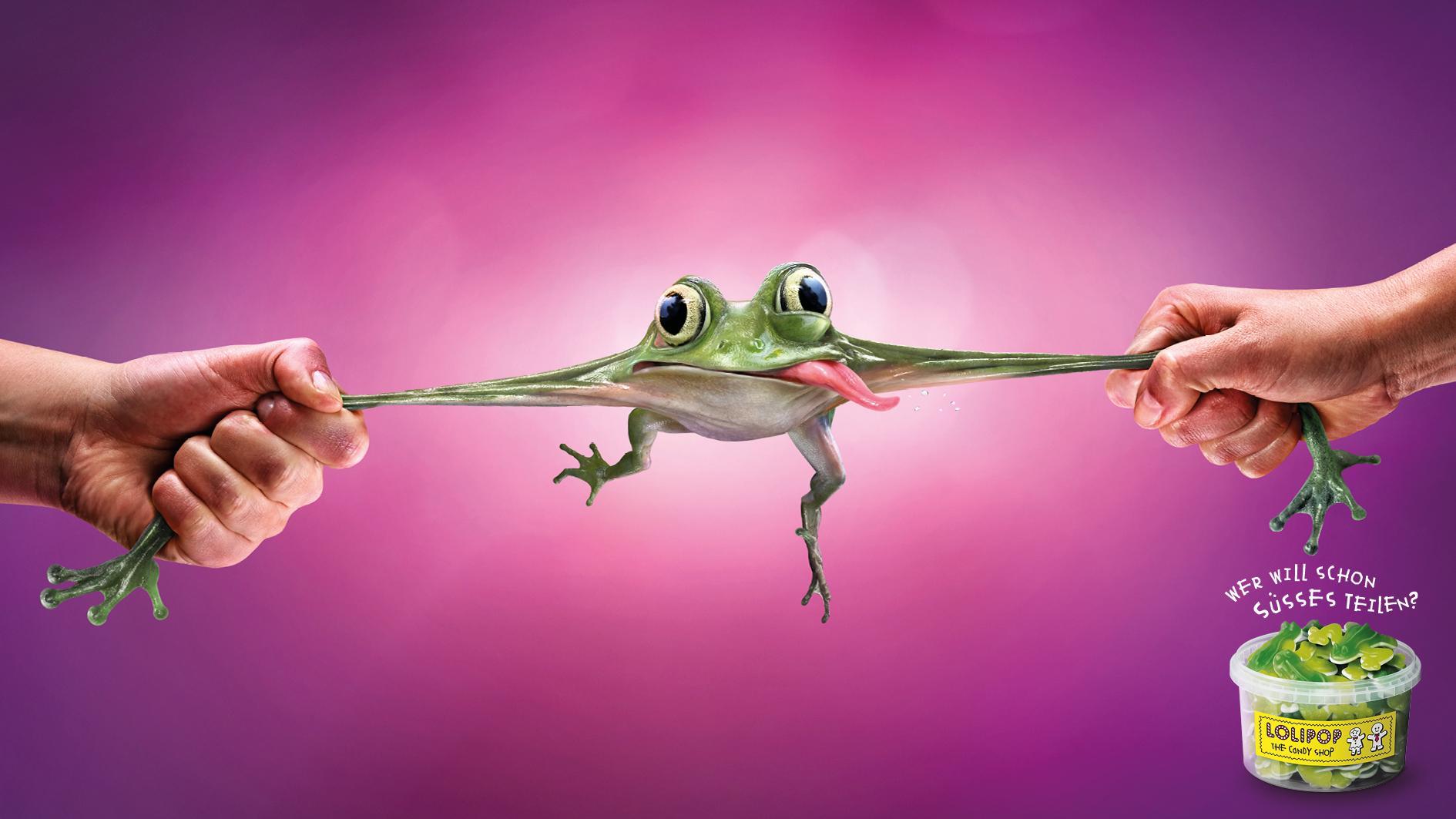 2_Lolipop_frog.jpg