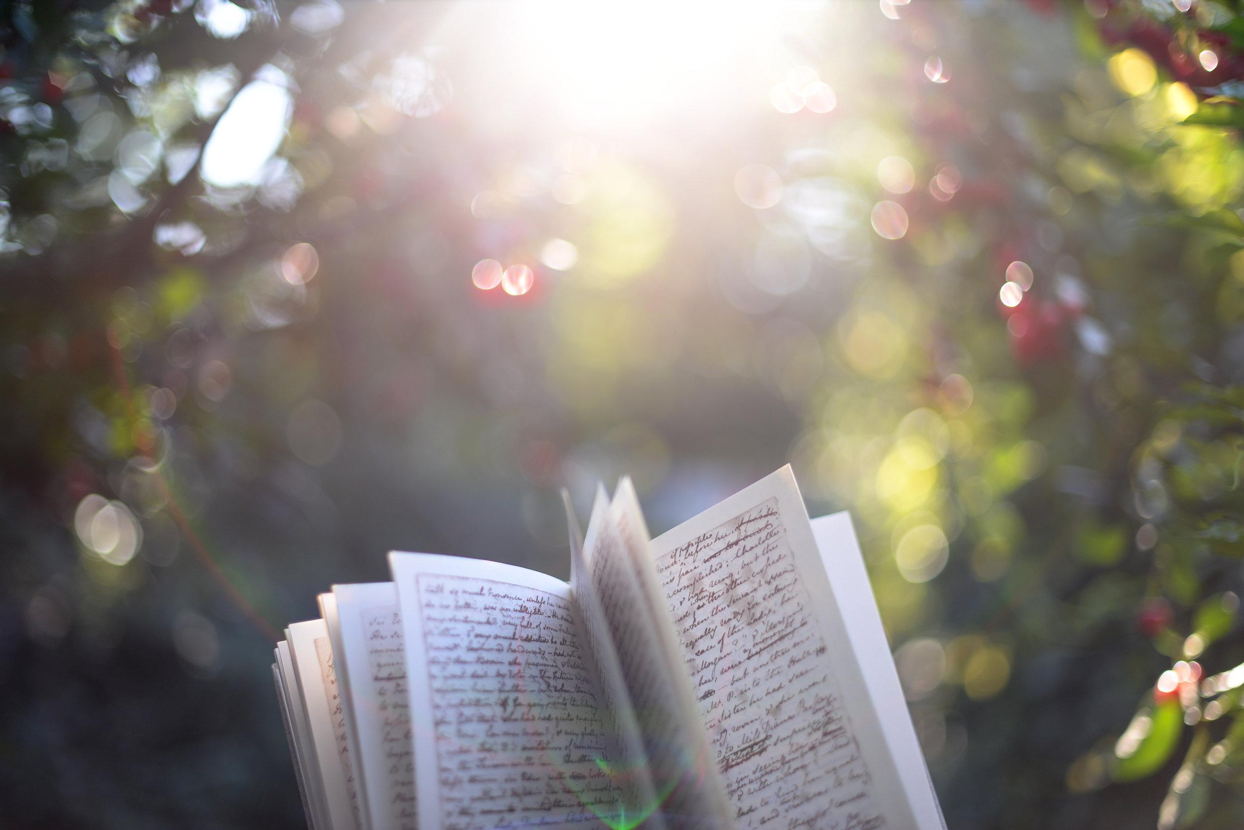 book and bokeh