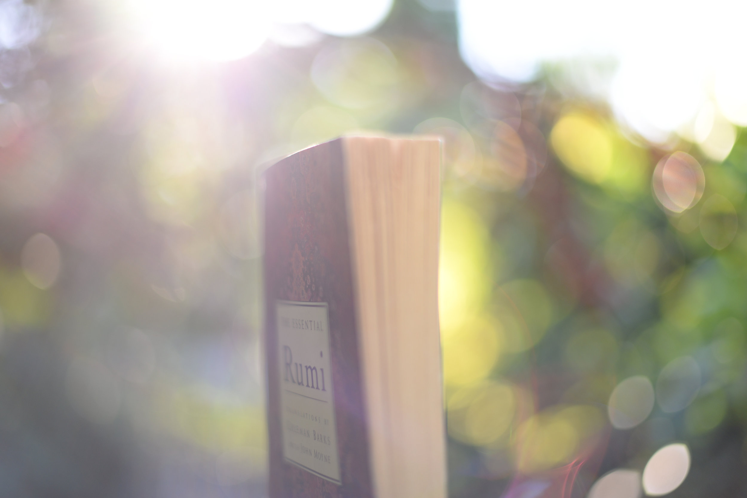 Rumi book and light
