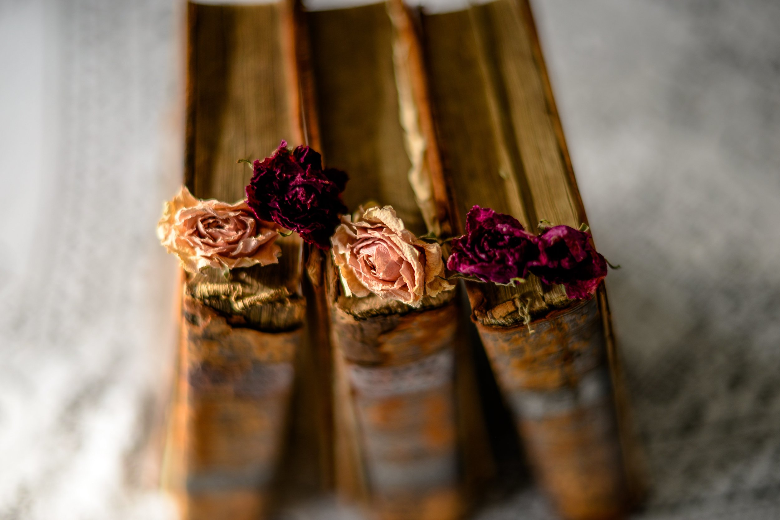 2-books and dried roses-6.jpg