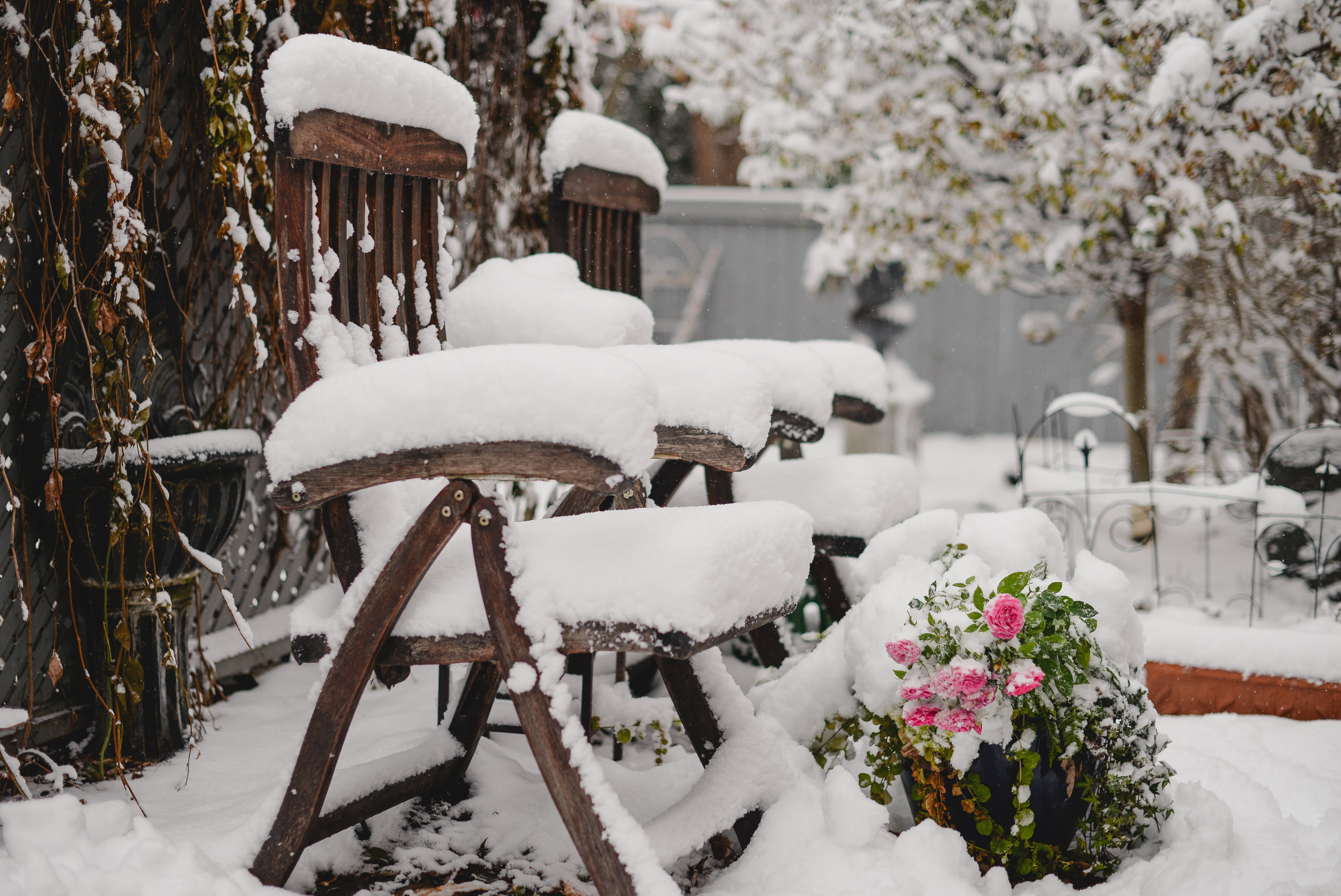 Snow on lawn chairs