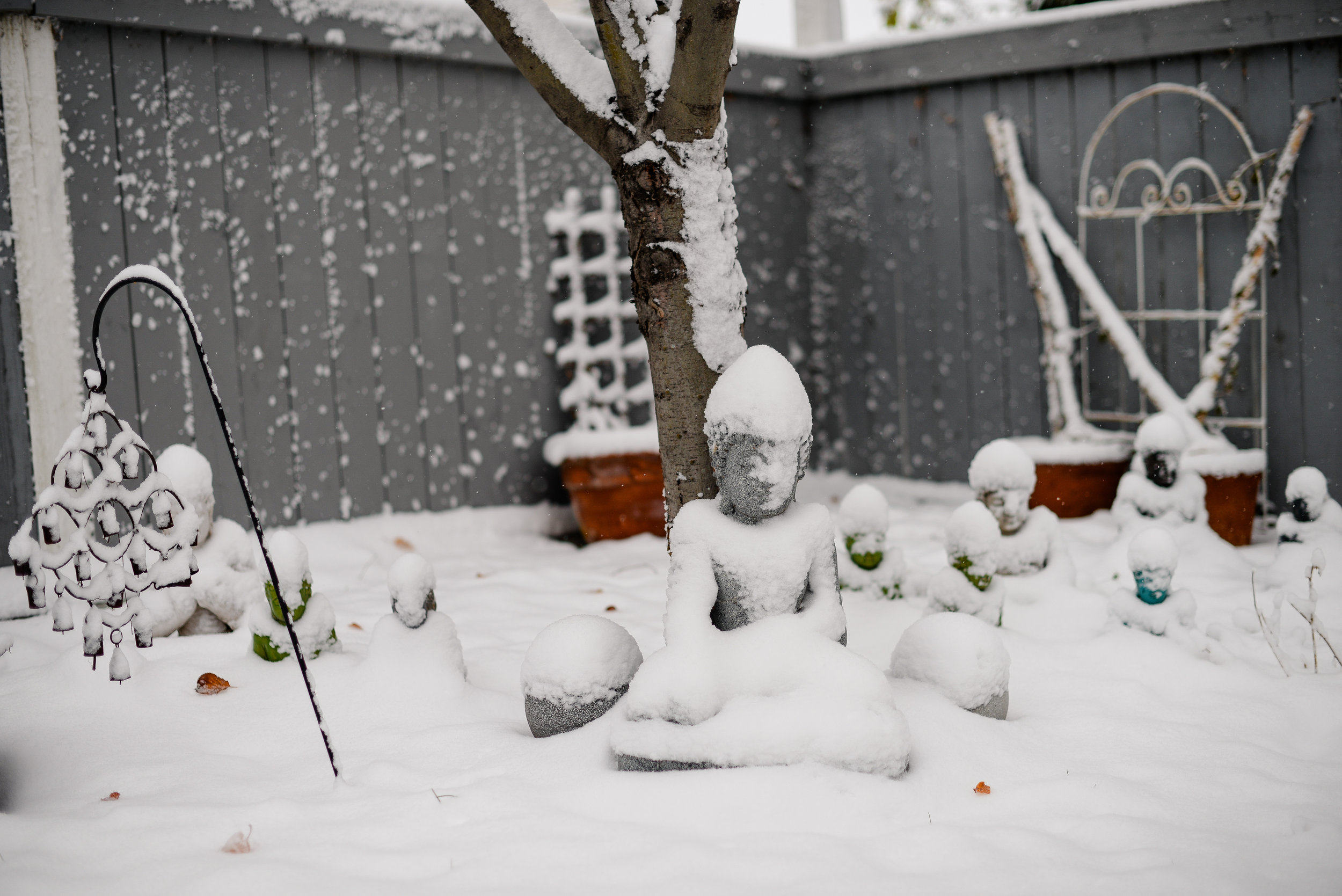 buddhas in the snow