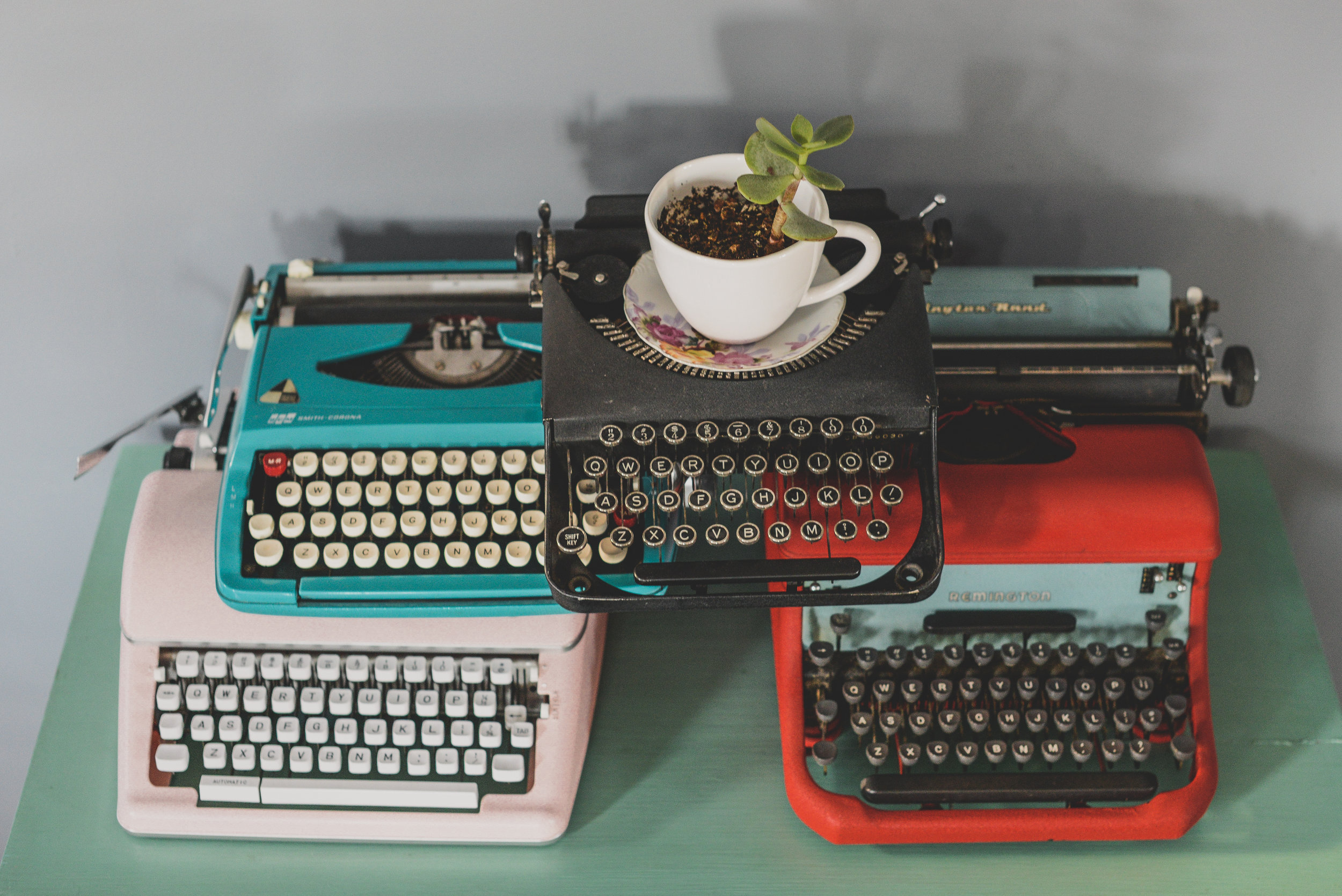plant and typewriters