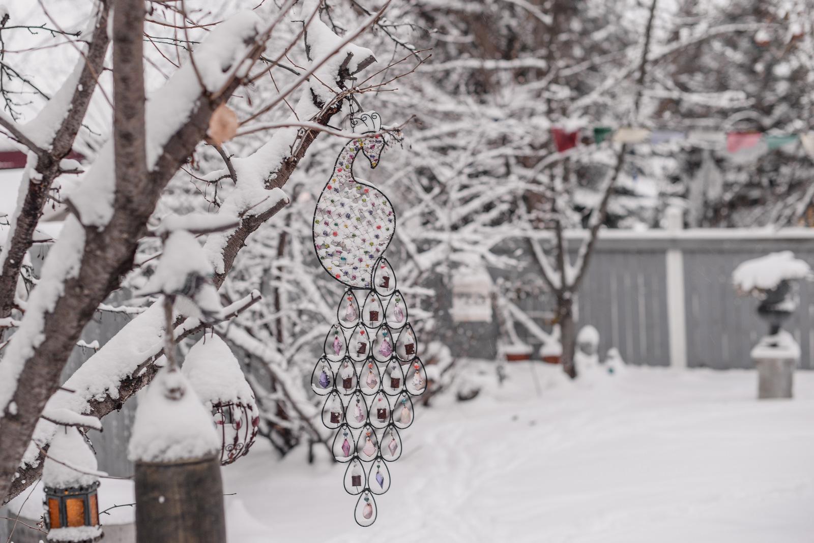 02-snow day-4.jpg