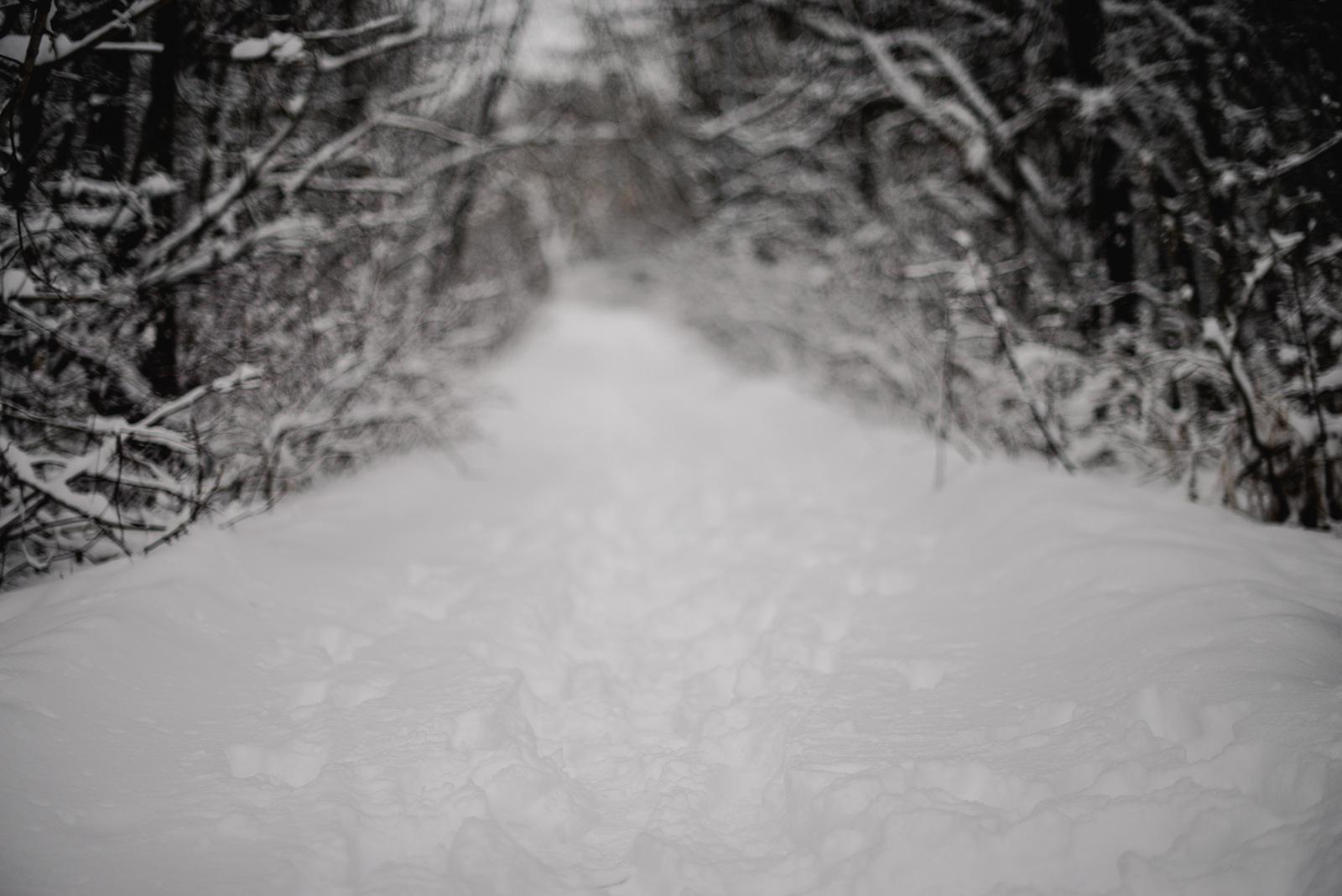 16-snow day-85.jpg
