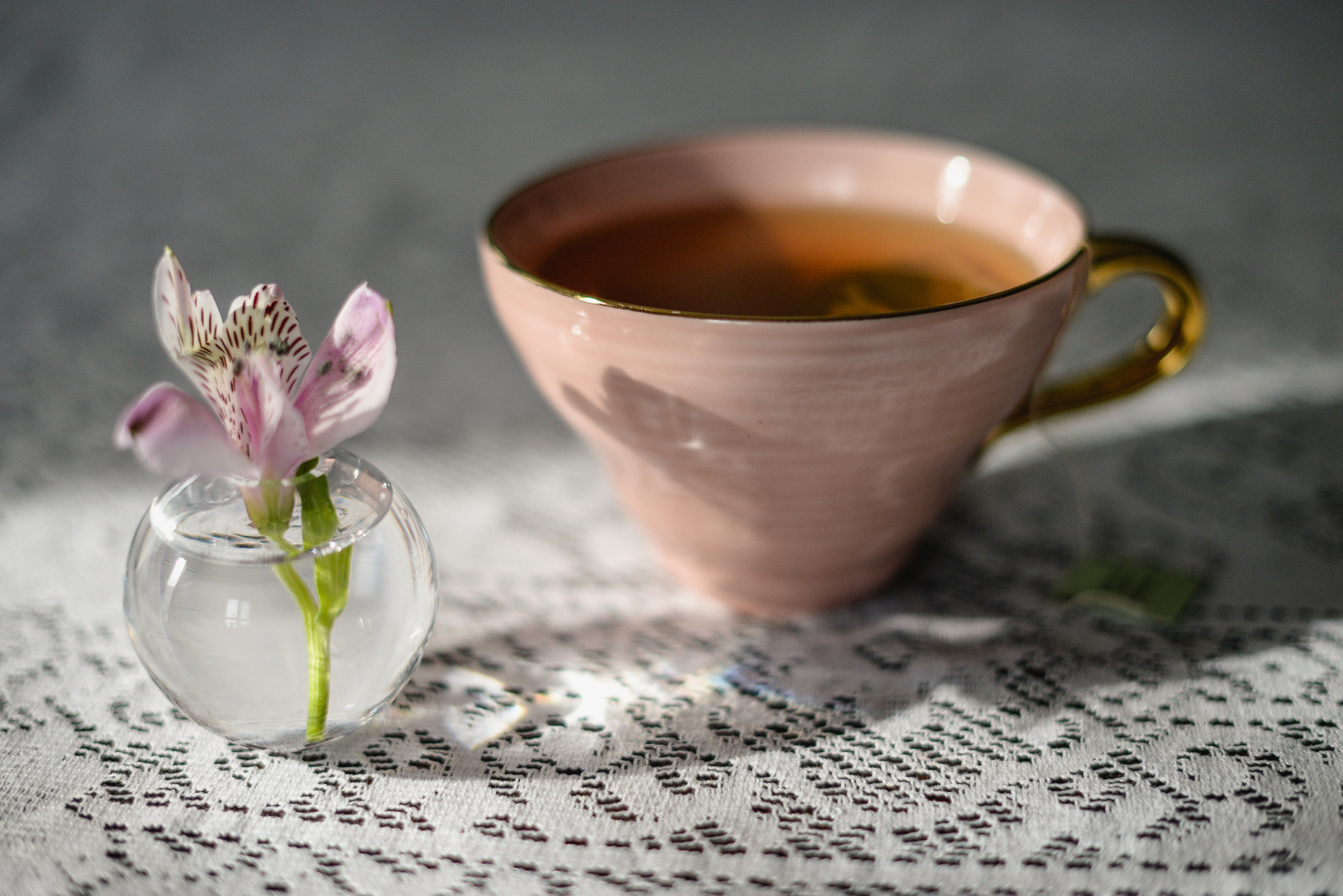 teacup and flower