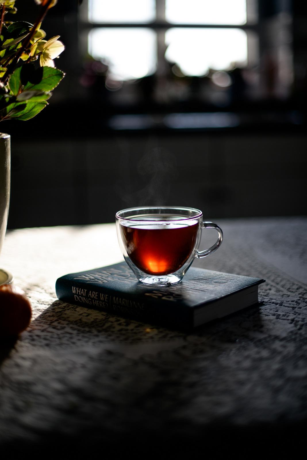 tea and Marilynne Robinson book